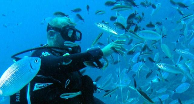 Benidorm - Submarinismo